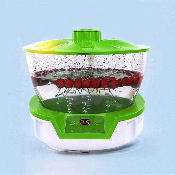 臭氧機 水果蔬菜解毒機活氧家用多功能肉食品凈化器臭氧殺菌消毒清洗菜機 源治良品