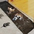 【DL312】滅鼠魔毯 超強力捕鼠板 黏鼠帶 粘鼠板 捕鼠器 捕鼠毯 黏鼠毯 黑底黏鼠魔毯 EZGO商城