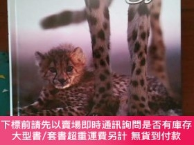 二手書博民逛書店【外文原版】罕見Studyguide for Zoology 動物學研究指南Y478501 Cram101 T