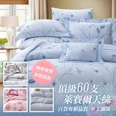 【貝淇小舖】 60支TENCEL天絲 特大雙人床包鋪棉兩用被套四件組~多種款式任選60S