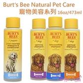 【彤彤小舖】Burt's Bees Natural Pet Care 寵物美容系列 寵物洗毛精 無香精 475ml