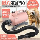 寵物吹水機 神寶寵物貓狗洗澡吹水機大功率靜音大型犬金毛吹風機烘干吹毛 第六空間 igo