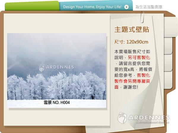 【ARDENNES】防水壁貼 壁紙 牆貼 / 霧面 亮面 / 雪景系列 NO.H004