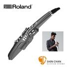 Roland 樂蘭 AE10G / AE...