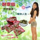 【雙11購物節免運】乳酸菌酵素梅《單顆便利包》(120g/袋)X1袋 -02