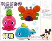麗嬰兒童玩具館~寶貝洗澡玩具~樂雅專櫃.噴水小鯨魚/小章魚/小螃蟹 -抗菌.特價