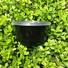 黑色加厚一次性打包盒 圓形外賣餐盒便當盒 帶蓋塑料湯碗 色拉盒
