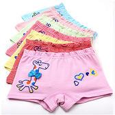 女孩長頸鹿條紋平口褲 不挑色 兒童內褲