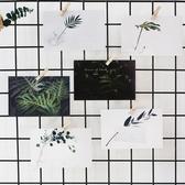 伊人 葉葉無聲綠植明信片裝飾卡片文藝賀卡