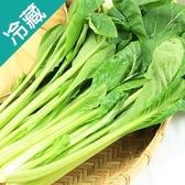 【產銷履歷】油菜1包(250g±5%/包)【愛買冷藏】