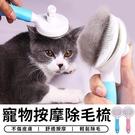 【台灣現貨 C009】 寵物梳子 一鍵式 自動除毛梳 除毛刷 寵物美容 貓狗梳子 寵物梳 寵物用品