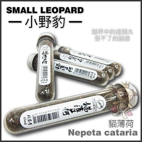 『寵喵樂旗艦店』Small Leopard小野豹 貓薄荷45ML