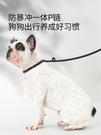 狗狗牽引繩p鍊狗項圈一體式狗鍊子p繩牽狗繩泰迪防爆沖小型遛狗繩