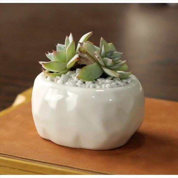 ⓒ石頭紋路橢圓形陶瓷花盆 多肉植物盆栽【BI09002】
