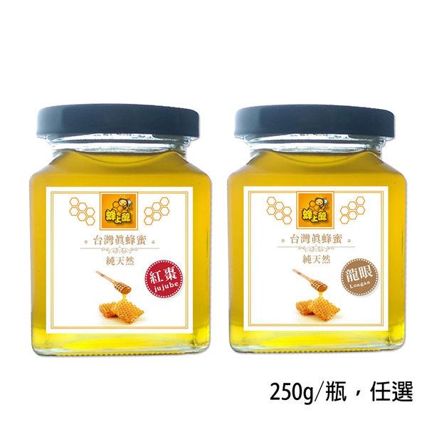 【蜂上醇】台灣真蜂蜜x1瓶(250g/瓶) 龍眼蜂蜜、紅棗蜂蜜 任選~純天然~SGS檢驗合格