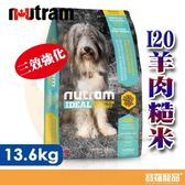 紐頓 I20三效強化犬 羊肉糙米 13.6KG【寶羅寵品】