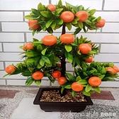 大中號仿真水果樹橘子蘋果桃子樹盆栽綠植塑料假花家居飾品擺件 新品全館85折 YTL