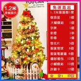 聖誕樹 120cm聖誕樹 豪華耶誕樹 台灣現貨快出 聖誕店鋪場景佈置豪華飾品聖誕節裝飾品【現貨】WY