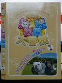 挖寶二手片-X19-081-正版DVD*動畫【狗狗猩猩大冒險 第二季(1)】-國語發音