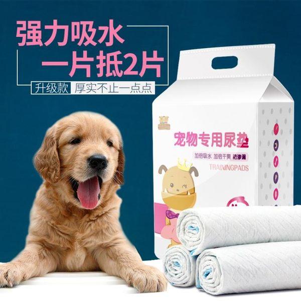 狗狗尿片 寵物用品尿墊貓尿布泰迪尿不濕吸水墊加厚除臭100片【全館免運八八折下殺】