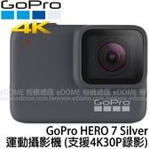GoPro HERO 7 Silver 銀 銀色 運動攝影機 贈收納保護盒 (24期0利率 免運 台閔公司貨) 防水 支援4K30P