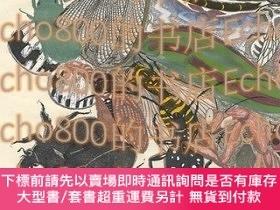 二手書博民逛書店〈アルチンボルドに捧ぐ五題〉の內蟲Dedicated罕見to Arcimboldo series   Insect