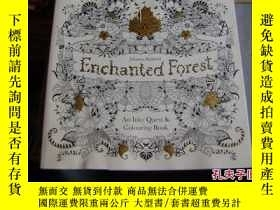 二手書博民逛書店Enchanted罕見Forest : An Inky Ques