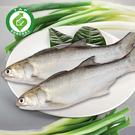 (4包)履歷達人午仔魚250-300g含運組