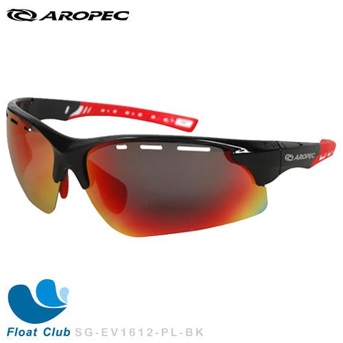 AROPEC 偏光太陽眼鏡 Aquila 運動眼鏡 SG-EV1612