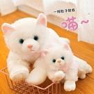 公仔玩偶仿真貓咪會叫出聲毛絨玩具公仔可愛抱枕兒童玩偶生日禮物寵物擺件