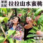 產地直配【果之蔬-全省免運】拉拉山五月水蜜桃(媽媽桃)X1盒(2.4斤±10%/盒 每盒6粒)