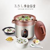 電燉鍋紫砂鍋 電燉盅煲湯鍋紫砂煲 220V YYP