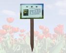 彩色照片 植物解說牌 12.5X17.8cm 附專用插桿支柱 35cm 購買時請告知植物名稱