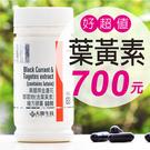 【大醫生技】黑醋栗金盞花萃取物(含葉黃素)膠囊 $700/瓶 買3送1瓶500錠藍藻或綠藻