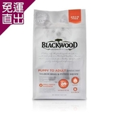Blackwood柏萊富 無榖全齡低敏挑嘴(鮭魚+碗豆) 犬糧 5磅 X 1包【免運直出】
