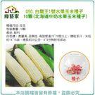 【綠藝家】G50.白龍王1號水果玉米種子...