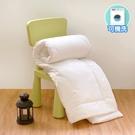 鴻宇 睡袋被胎 睡袋專用 可機洗 可水洗四季被 台灣製