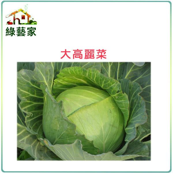【綠藝家】B08.大高麗菜種子種子50顆