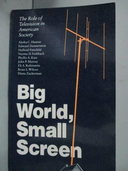 【書寶二手書T2/原文小說_GJQ】Big World, Small Screen