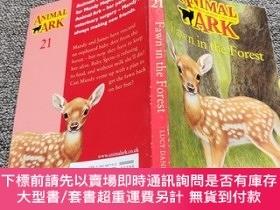 二手書博民逛書店Animal罕見Ark 21: Fawn in the ForestY22224 Daniels, Lucy