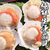 極鮮生凍扇貝 *1包組( 500g±10%/包 )( 7-10顆/包 )