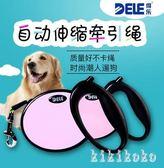 寵物牽引繩 自動伸縮 泰迪小型犬狗鏈子狗繩遛狗繩狗狗用品 XY8238【KIKIKOKO】