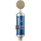 ::bonJOIE:: 美國進口 Blue Bluebird SL 專業麥克風 Microphones Large-Diaphragm Condenser Microphone MIC