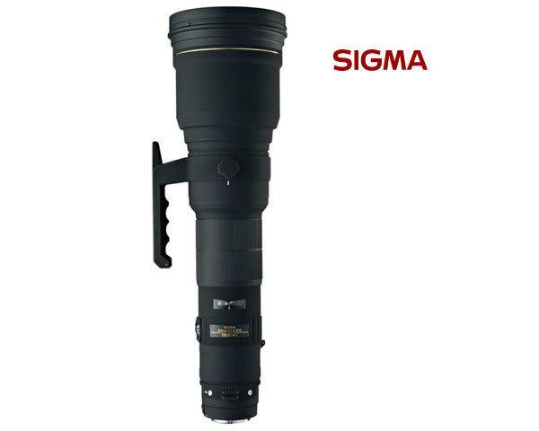 SIGMA 800mm F5.6 EX DG APO HSM 鏡頭 (24期0利率 恆伸公司貨三年保固) 拍鳥鏡頭