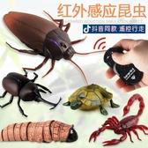抖音同款遙控蟑螂昆蟲子電動螳螂玩具蛇蜘蛛整人仿真惡搞整蠱蝎子 城市科技