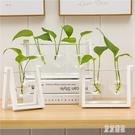創意花瓶餐桌客廳插花玻璃透明小清新水培綠蘿北歐辦公桌家居擺件 LJ5202【極致男人】