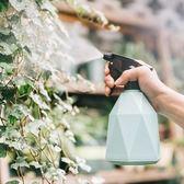 家用園藝澆花噴壺小型手動多肉噴霧器室內氣壓式小型盆栽噴水壺