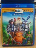 挖寶二手片-Q00-346-正版BD【捍衛聯盟 3D+2D】-藍光動畫