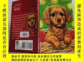 二手書博民逛書店Spaniel罕見surprise 獵犬驚喜Y200392