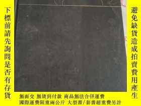 二手書博民逛書店the罕見sum mer be fore the dark【書皮